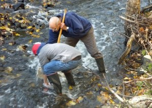 Vernon Conservation Commission's annual Tankerhoosen River Bioassessment Survey.